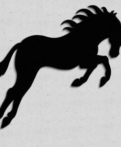 konie1_wgalopie01