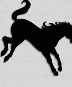 konie1_wgalopie06